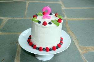 WATERMELON CAKE (Vegan, GF, Raw)