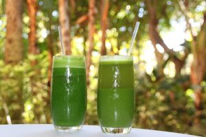 Green Protein Smoothie & Green Machine Smoothie (V & GF)